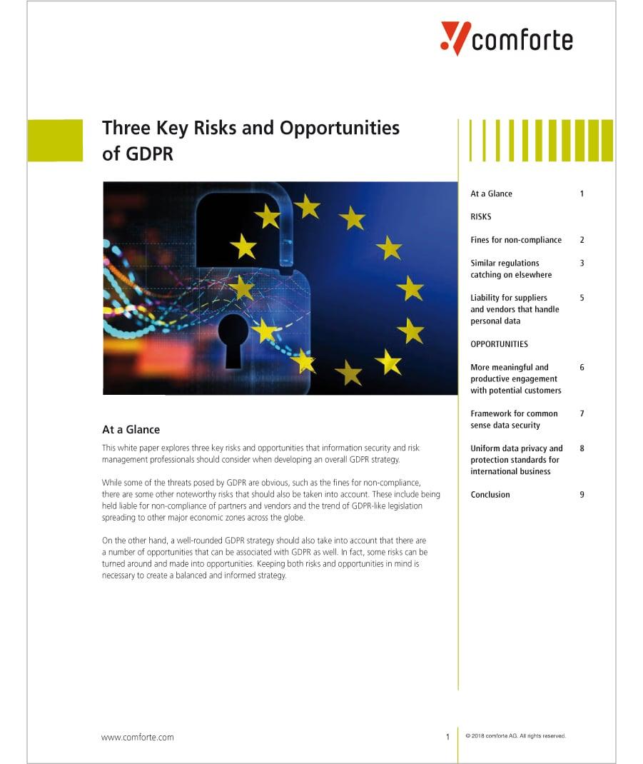 WP_3_Key_Risks_Opportunities_GDPR
